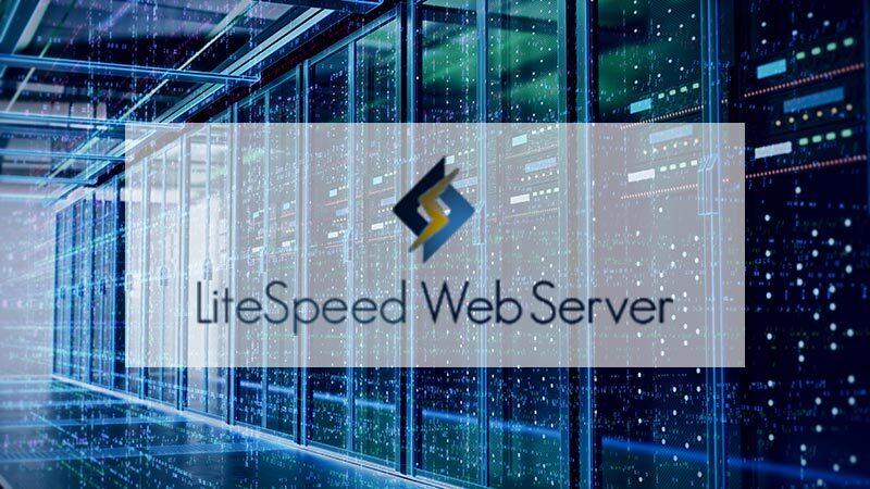 lightspeed-web-server
